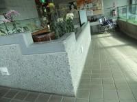 玄関から受付までのスロープ幅167cm、傾斜6度