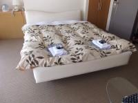 801号室(スイートルーム)入口幅80cm、ベッドの高さ40cm