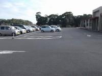 一般駐車場150台大型バス5台