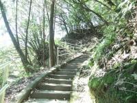 階段350段程度