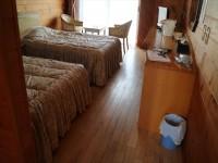 A-204洋室、ベッドの高さ50cm(2階階段車いす利用不可)