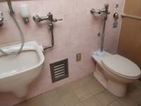 一般トイレ内にオストメイト有り