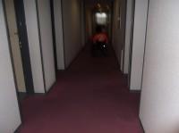 客室への通路幅160cm